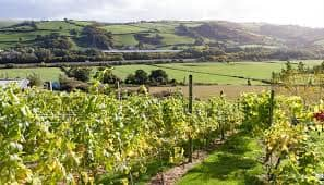 What do the Loire, Nappa and Conwy Valleys have in common?
