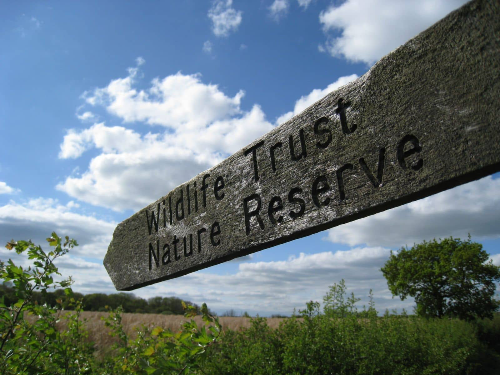 North Wales Nature Reserves.......do you know how many there are?